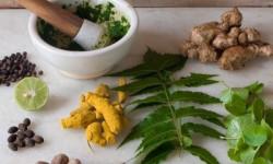 Травы для лечения аденомы простаты и простатита
