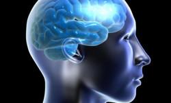 Энцефалопатия Вернике (синдром Гайе-Вернике)