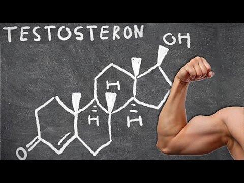 Как повысить уровень тестостерона у мужчин естественными способами