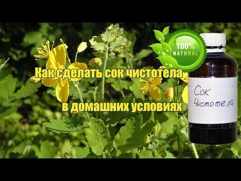 Приготовление сока травы чистотела, как получить сок чистотела в домашних условиях