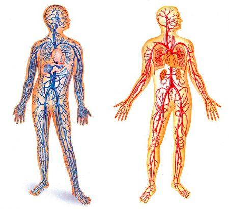 Почему с похмелья тяжело дышать
